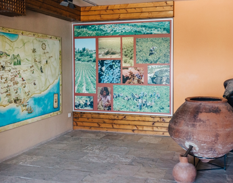 Cyprus-Wine-Museum-34