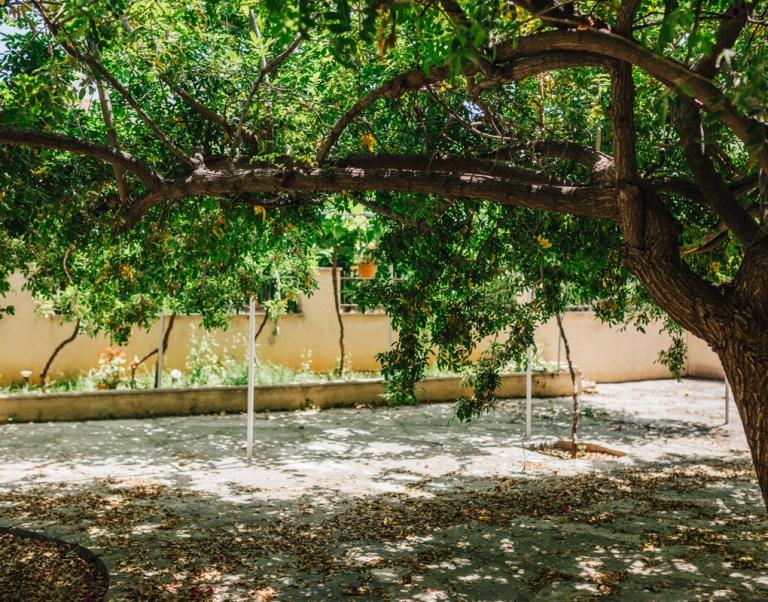 Cyprus-Wine-Museum-6